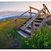 Filberg Beach 2019 2b - Landscapes