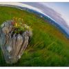 Filberg Beach 2019 3 - Landscapes