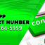 cash-app--Cantact-Number - Cash App Contact Number