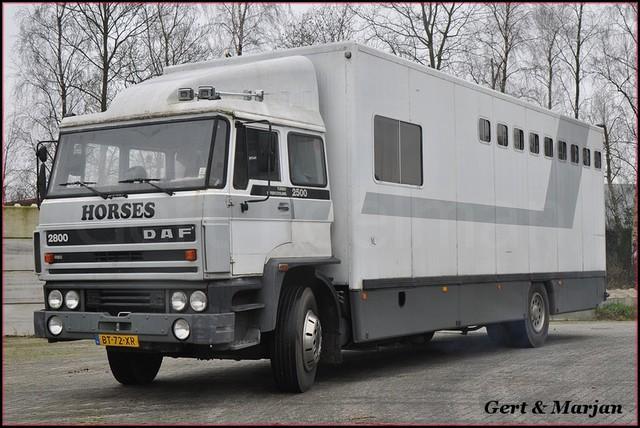 DSC 5533-BorderMaker Daf trucks