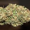 Buy Cannabis Edibles Online