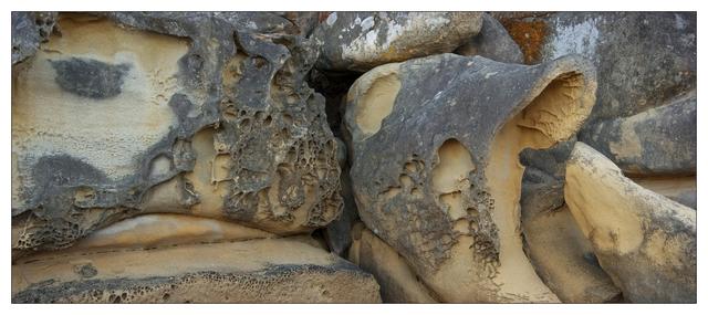 Biggs Park Panorama 2019 1 Nature Images