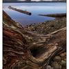 Comox Lake Fall 2019 3 - Landscapes