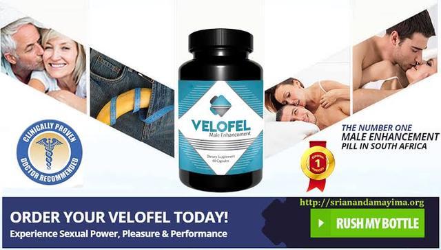 Como funciona o Velofel dentro do seu corpo? velofel176