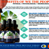 We The People Hemp 2 - where to Buy We the People ...