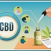 how-to-use-cbd-oil-01 - Thinking About Ever Mixture...