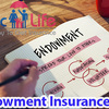 Do You Need Endowment Insur... - Insurance