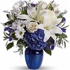 Mothers Day Flowers Crystal... - Flower Delivery in Crystal ...