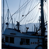 Deep Bay 2020 2 - Vancouver Island
