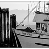 Deep Bay 2020 5 - Black & White and Sepia