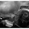 Comox Airpark 2020 16 - Black & White and Sepia