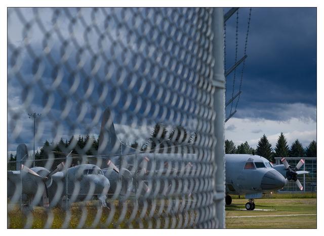 Comox Airpark 2020 20 Comox Valley