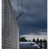 Comox Airpark 2020 19 - Comox Valley