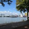 IMG 9680 - Rotterdam