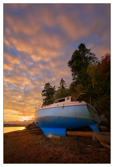 Abandoned on the Shore 2020 4 Abandoned