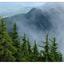 Mt Washington 2020 3 - Landscapes