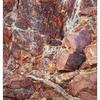 Mt Washington 2020 6 - Nature Images