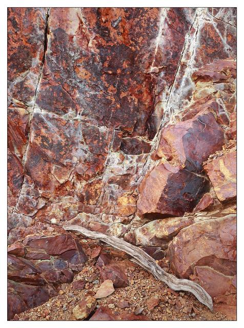 Mt Washington 2020 6 Nature Images