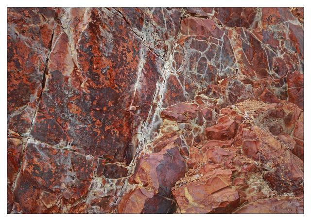 Mt Washington 2020 7 Nature Images