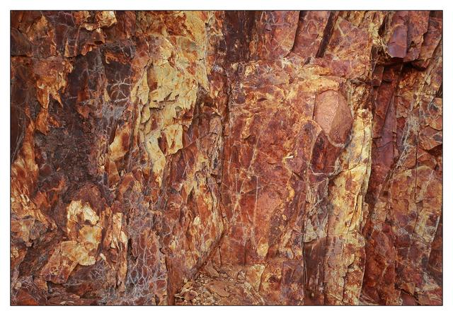 Mt Washington 2020 8 Nature Images
