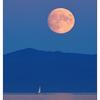 Harvest Moon 2020 2 - Vancouver Island