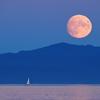 Harvest Moon 2020 1 - Vancouver Island