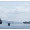 Ladysmith Boats 2020 - Panorama Images