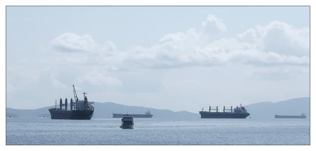 Ladysmith Boats 2020 Panorama Images