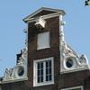 P1070504 - amsterdam