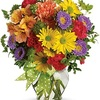 Buy Flowers Maple Ridge BC - Flower Delivery in Maple Ri...