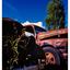 White Post 030 - 35mm photos