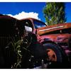 White Post 012 - 35mm photos