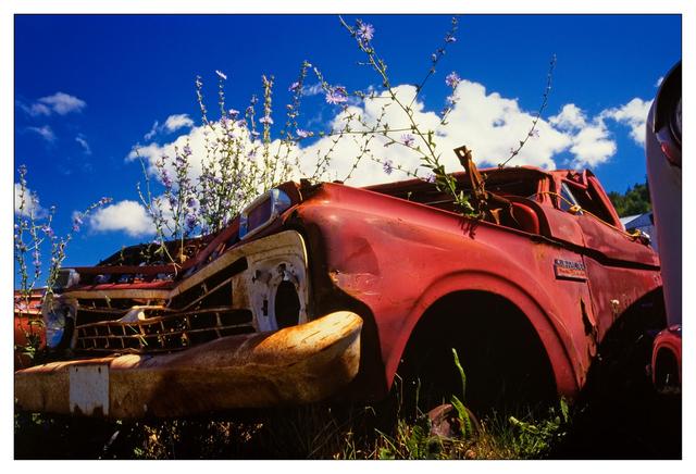 White Post 01 35mm photos