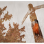 Totem Bird 2020 - Multiple Exposure