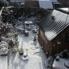 Besneeuwde achtertuin 09-02... - In de tuin 2021