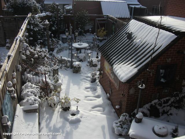 Besneeuwde achtertuin 09-02-21 1 In de tuin 2021
