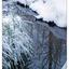 Hawk Glen Winter 2021 2 - Landscapes