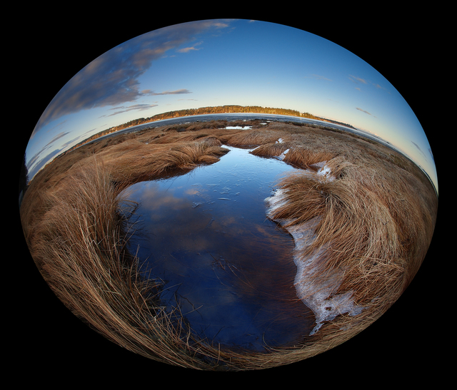 Millard Beach 2021 4 Landscapes