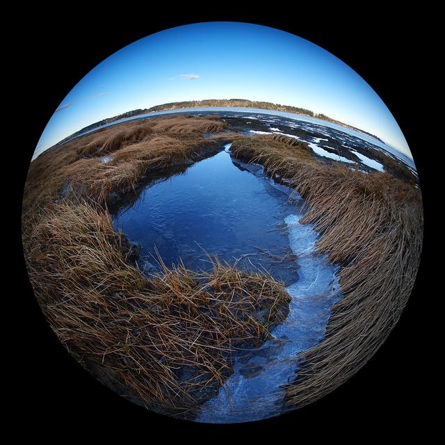 Millard Beach 2021 2 Landscapes