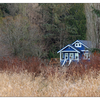 Marsh Home - Comox Valley