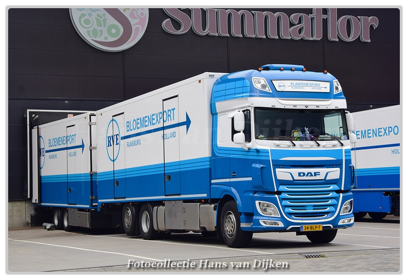 RVE Bloemenexport 34-BLP-7(0)-BorderMaker -