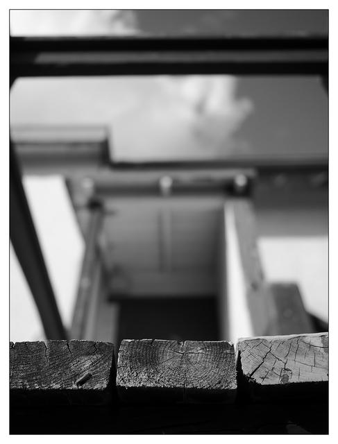 Union Bay 2021 11 Black & White and Sepia