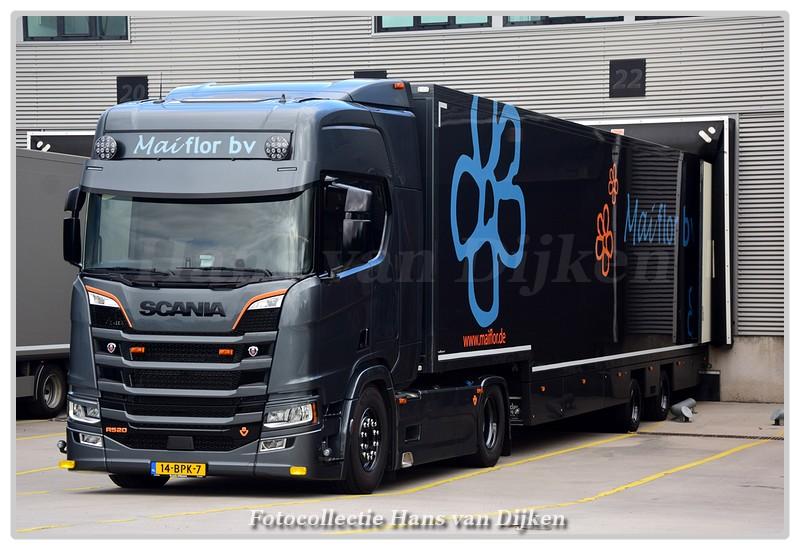 Maiflor bv 14-BPK-7(0)-BorderMaker -