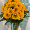 Order Flowers Westland MI - Flower Delivery in Miami Be...
