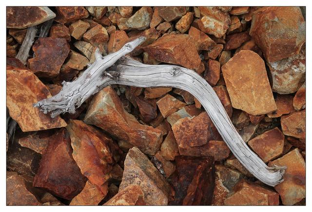 Mt Washington 2021 3 Nature Images