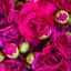 Flower Delivery in Abington MA - Florist in Abington, MA