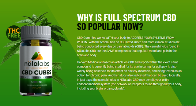 How Does Nala Labs Cbd Cubes Work? Picture Box