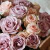 Flower shop near me - Florist in Wapakoneta, OH
