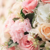 Fort Lauderdale FL Flower Shop - Florist in Fort Lauderdale, FL