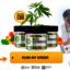 Tranquil Leaf CBD Gummies - Picture Box